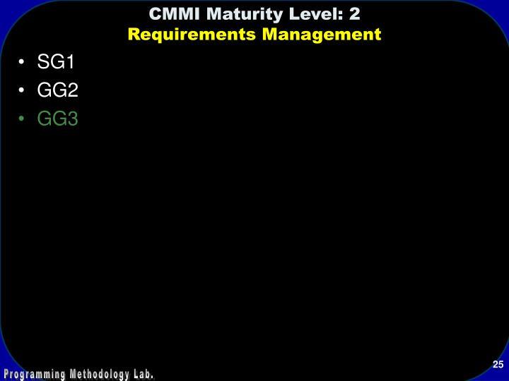 CMMI Maturity Level: 2