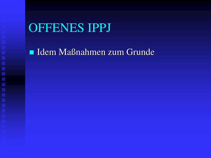 OFFENES IPPJ