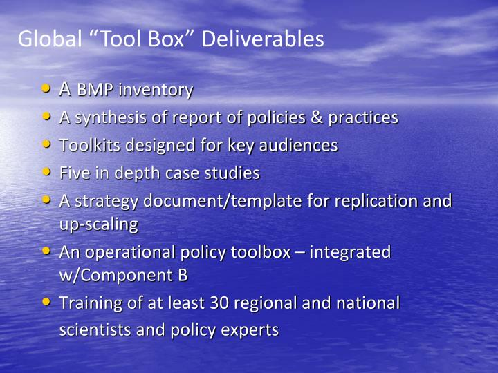 "Global ""Tool Box"" Deliverables"
