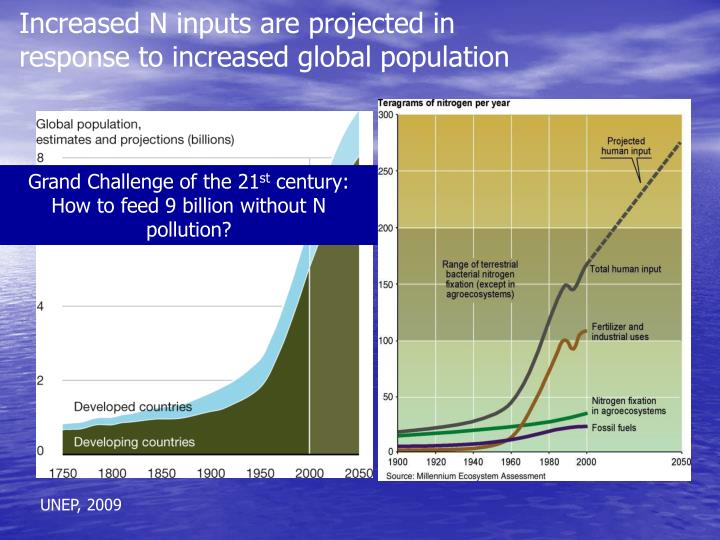 Increased N inputs are projected in response to increased global population