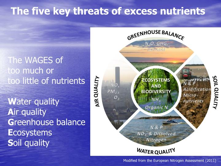 The five key threats of excess nutrients