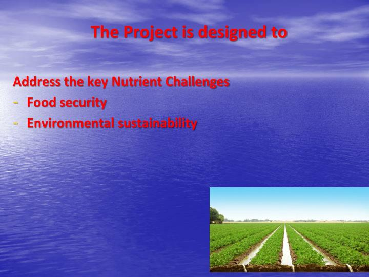 The Project is designed to