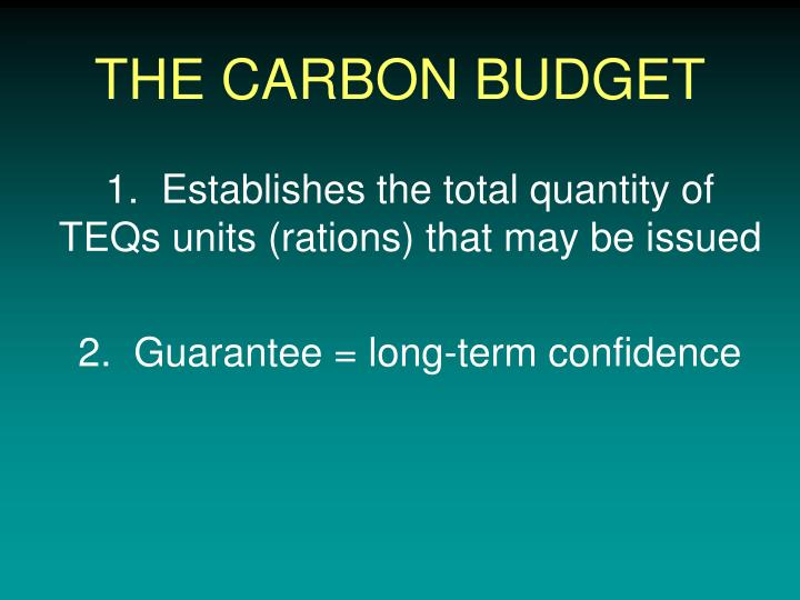 THE CARBON BUDGET