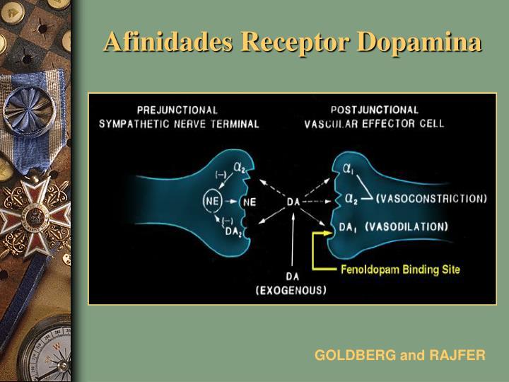 Afinidades Receptor Dopamina