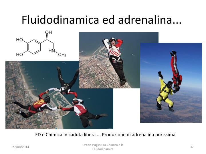 Fluidodinamica ed adrenalina...