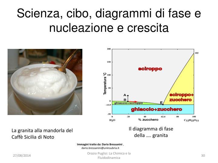 Scienza, cibo, diagrammi di fase e nucleazione e crescita