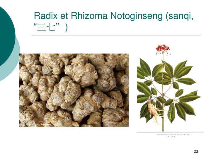 "Radix et Rhizoma Notoginseng (sanqi, """