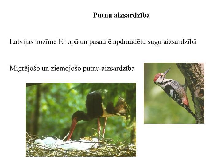 Putnu aizsardzība