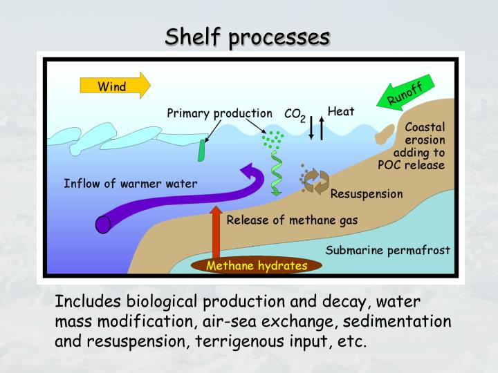 Shelf processes