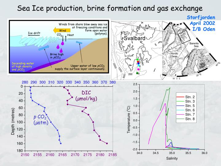 Sea Ice production, brine formation and gas exchange