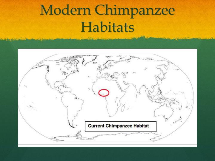 Modern Chimpanzee Habitats