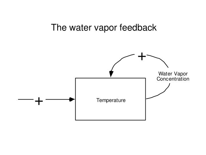The water vapor feedback