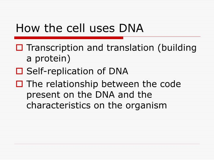 introduction to genetics and evolution relationship