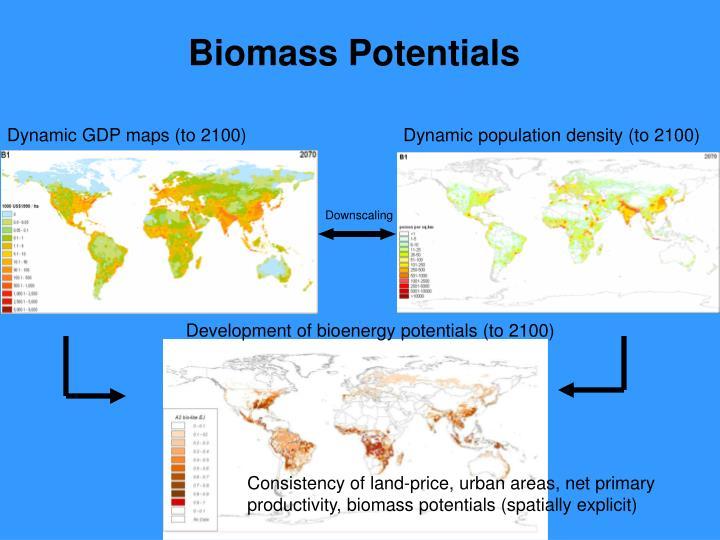 Biomass Potentials