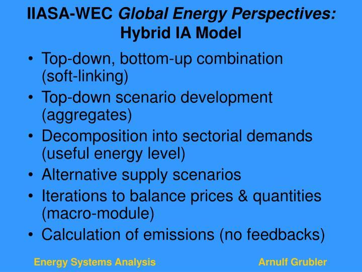 IIASA-WEC