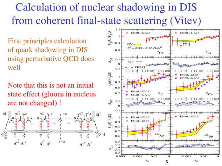 Calculation of nuclear shadowing in DIS from coherent final-state scattering (Vitev)