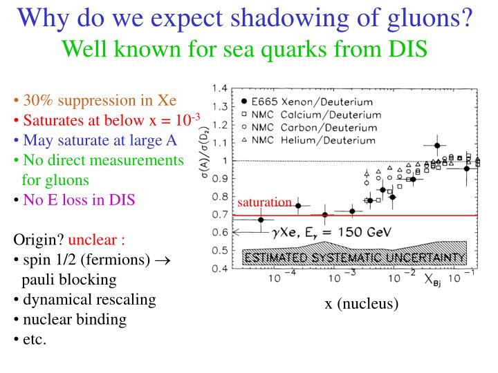 Why do we expect shadowing of gluons?