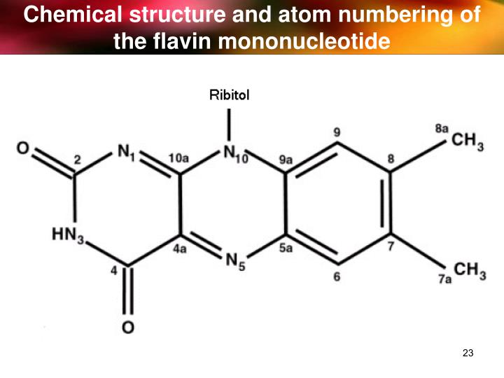 Chemical structure and atom numbering of the flavin mononucleotide
