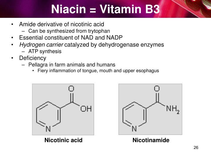 Niacin = Vitamin B3