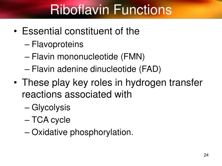 Riboflavin Functions