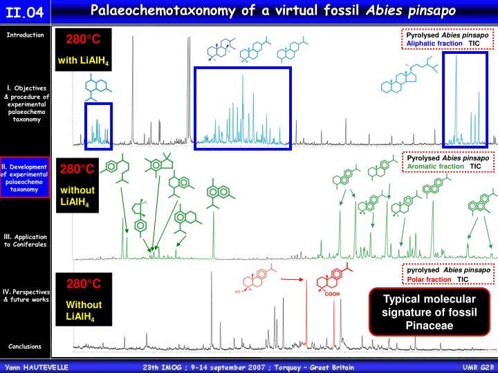 Palaeochemotaxonomy of a virtual fossil