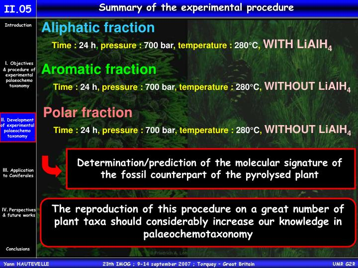 Summary of the experimental procedure