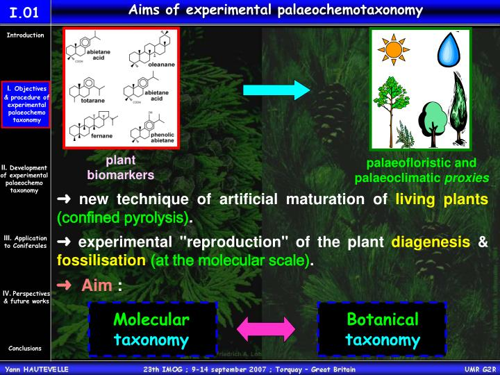 Aims of experimental palaeochemotaxonomy