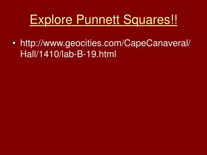 Explore Punnett Squares!!
