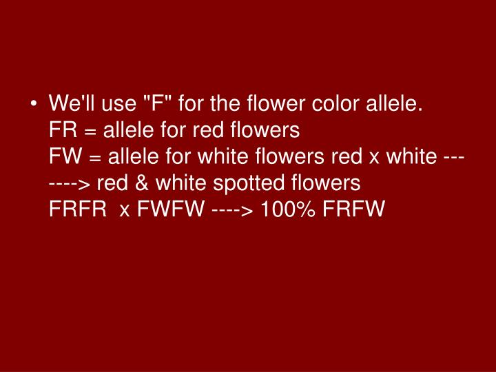 "We'll use ""F"" for the flower color allele."