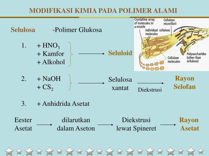 MODIFIKASI KIMIA PADA POLIMER ALAMI