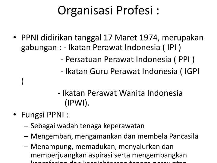 Organisasi Profesi :