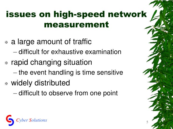 issues on high-speed network measurement