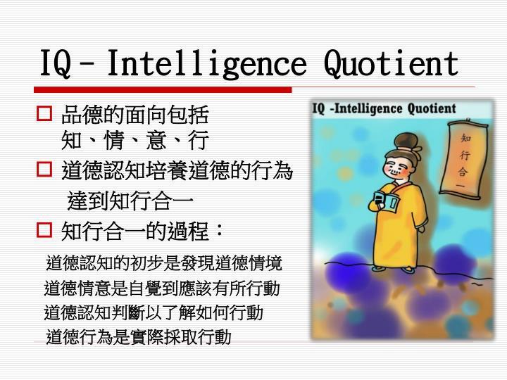 IQ–Intelligence