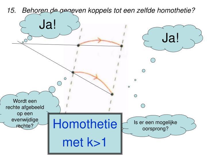 15.   Behoren de gegeven koppels tot een zelfde homothetie?