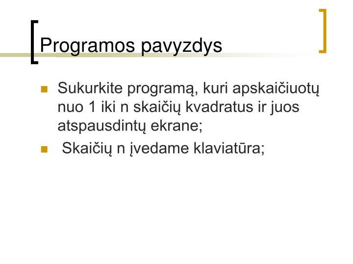 Programos pavyzdys