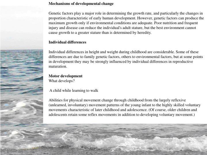 Mechanisms of developmental change