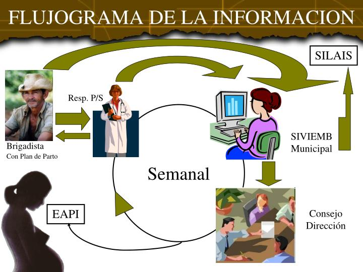 FLUJOGRAMA DE LA INFORMACION