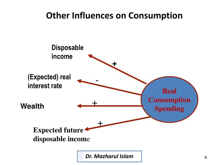 Other Influences on Consumption