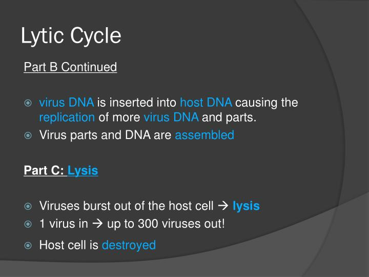Lytic Cycle