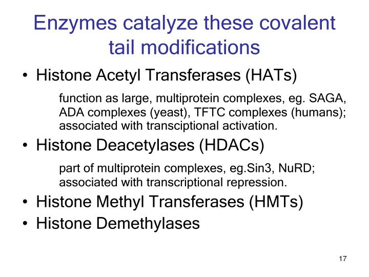 Enzymes catalyze these covalent tail modifications
