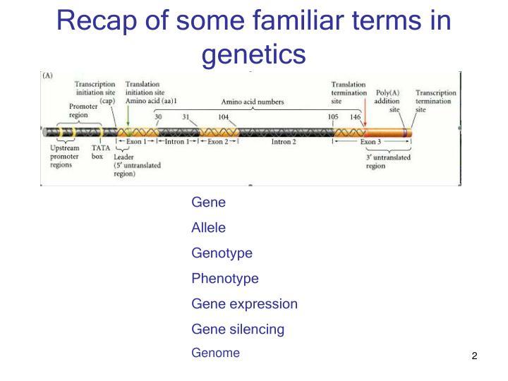 Recap of some familiar terms in genetics