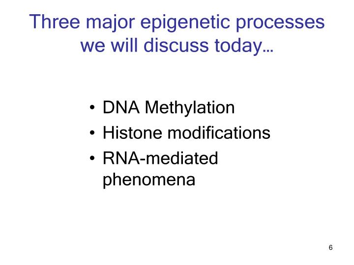 Three major epigenetic processes we will discuss today…