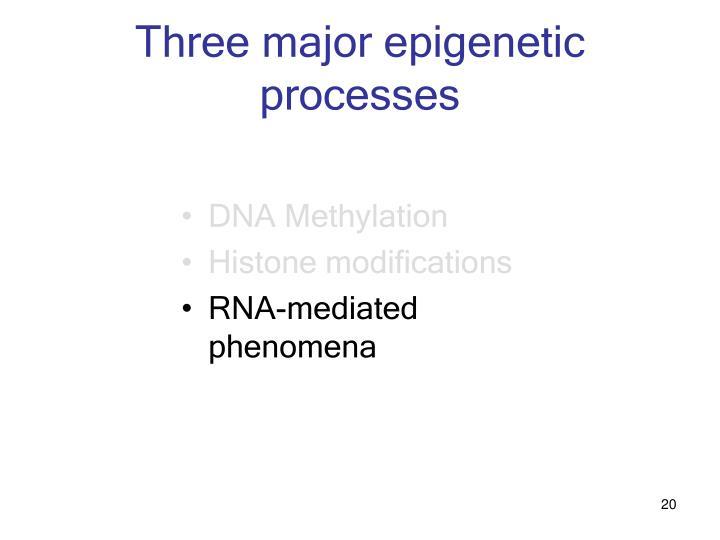 Three major epigenetic processes