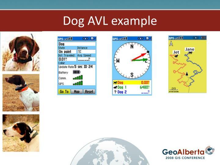 Dog AVL example