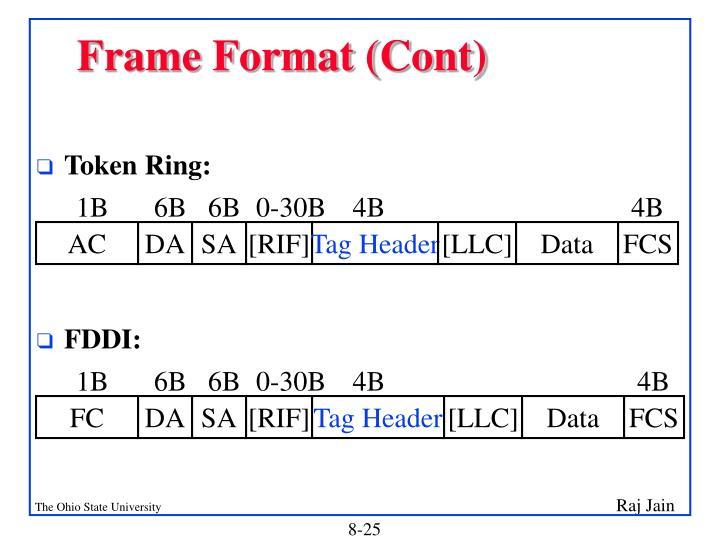 Frame Format (Cont)