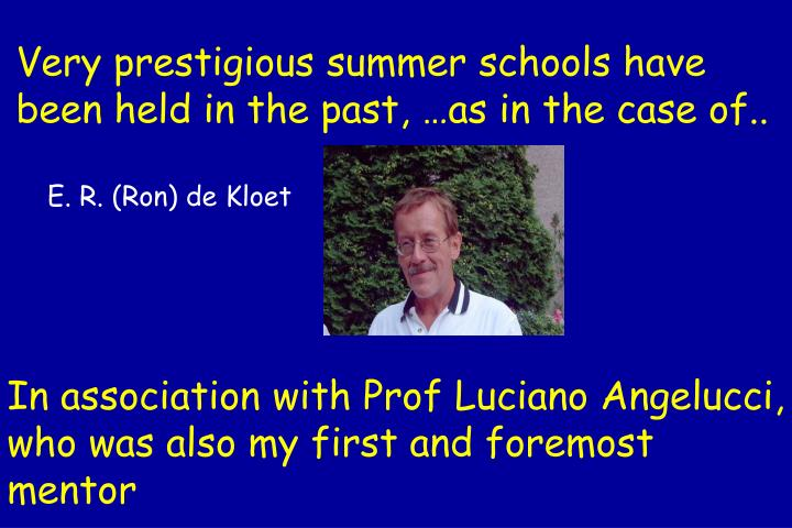 Very prestigious summer schools have been held in the past, …as in the case of..