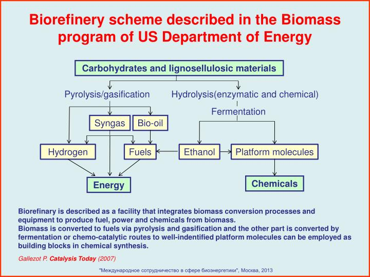 Biorefinery scheme described in the Biomass program of US Department of Energy