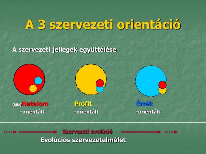 A 3 szervezeti orientáció
