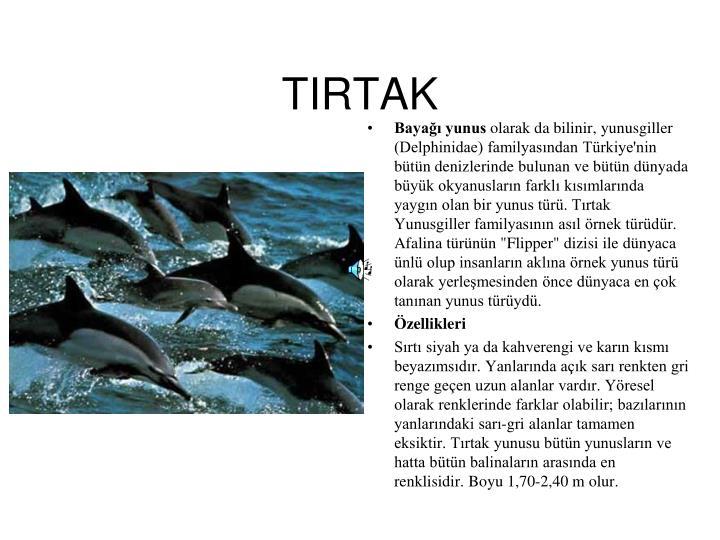 TIRTAK