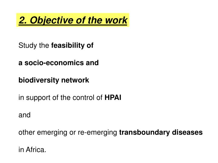 2. Objective of the work